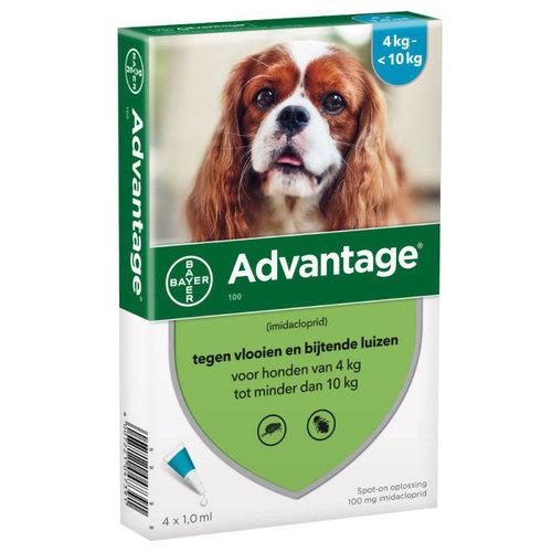 Advantage Advantage Hond 100 1 st.