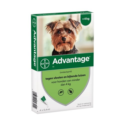 Advantage Advantage Hond 40 1 st.