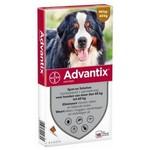 Advantix Advantix 600 > 4 Pipet 1 st.