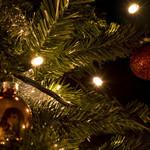 Luci di Natale   10 metri - Bianco caldo