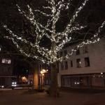 Luci di Natale | 10 metri - bianco caldo e brillante