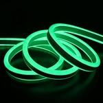 Neon LED - Verde - LINA