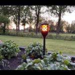 Torcia solare da giardino con effetto fiamma - nera