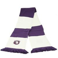 Beerschot Bar scarf