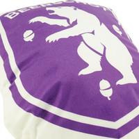 Beerschot 3D pillow logo
