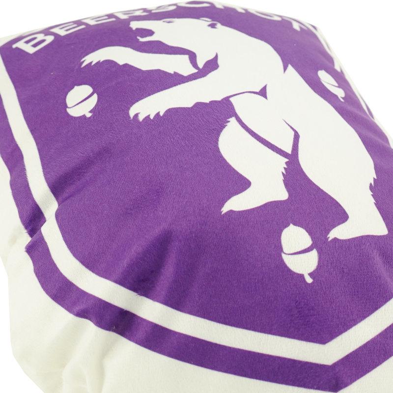 Beerschot 3D kussen logo