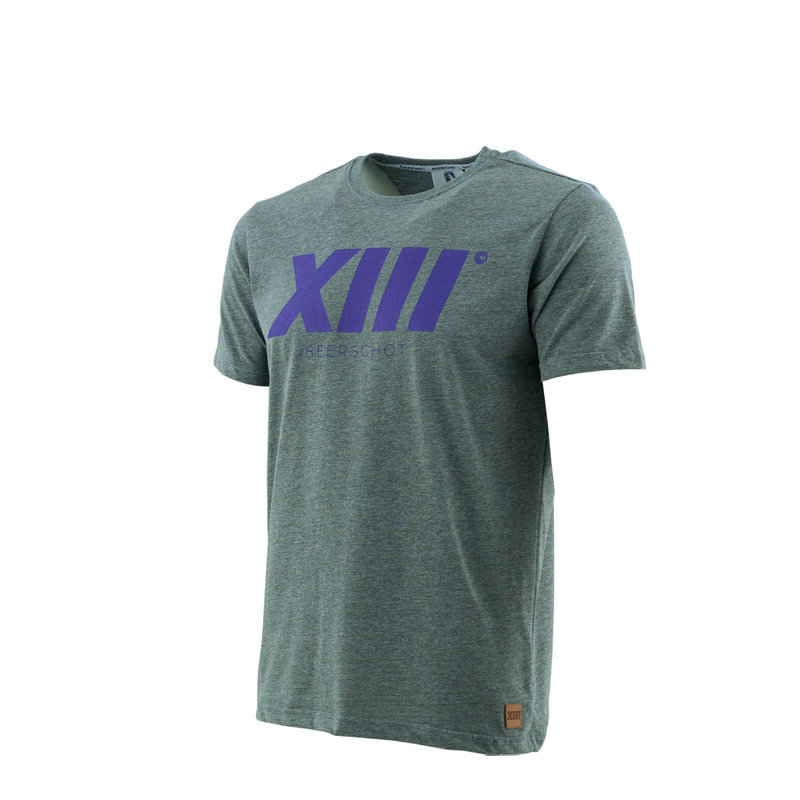 Beerschot T-shirt XIII Gris