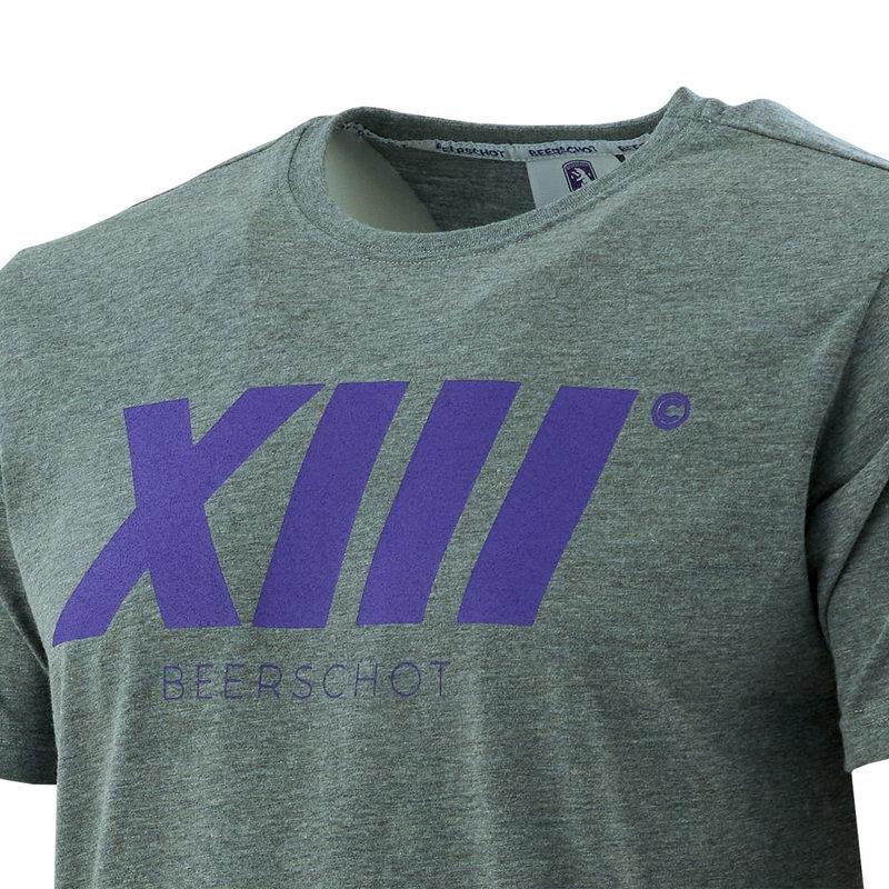 Beerschot T-shirt XIII Grijs