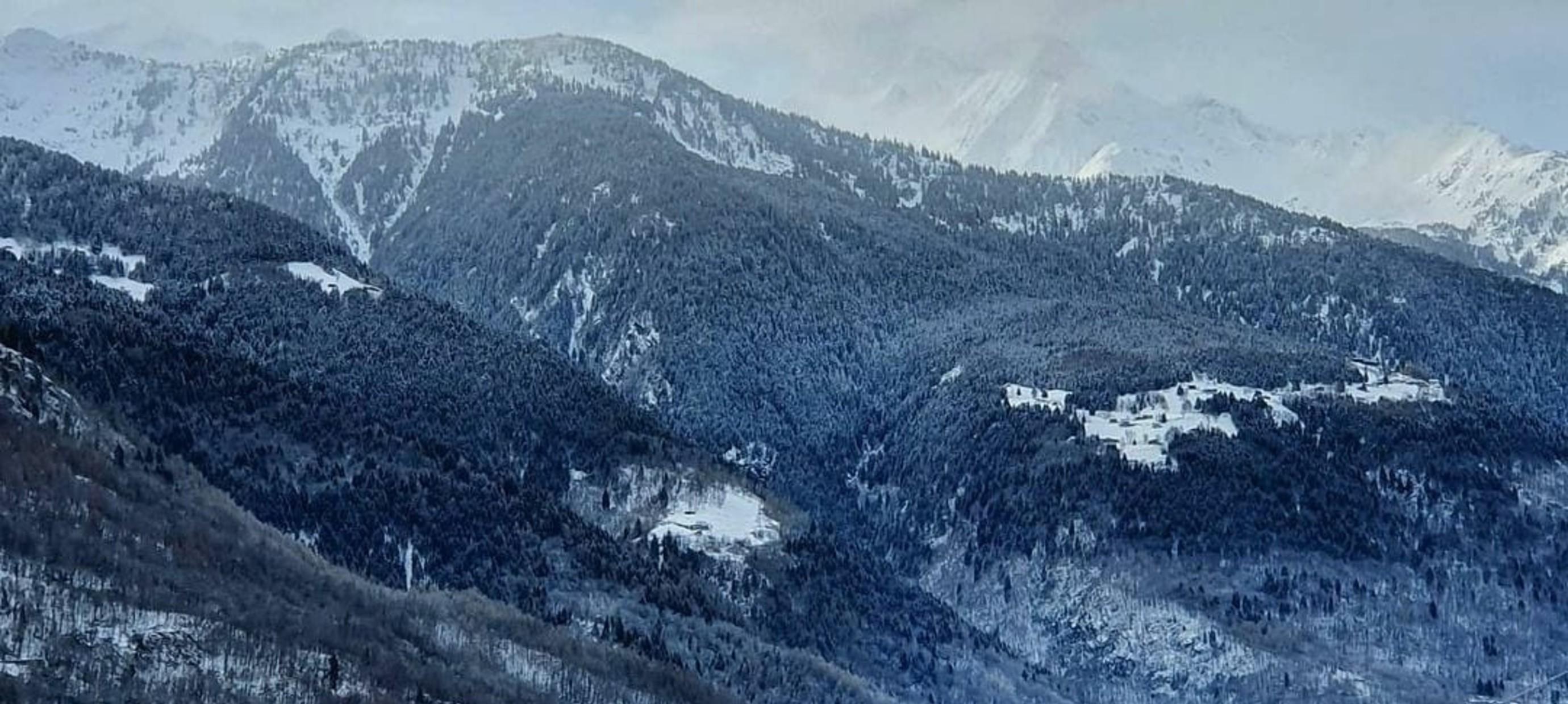 Nebbiolo wijnen uit de Alpen: Valtellina!