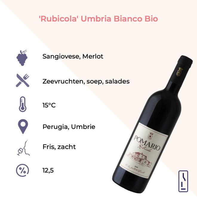 'Rubicola' Umbria Rosso Bio