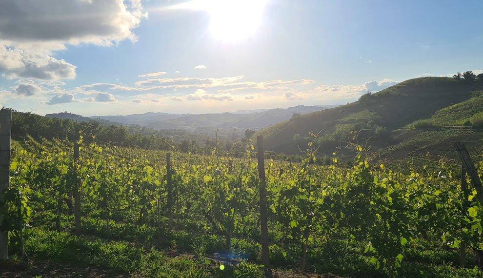 'Piemonte is een goed bewaard geheim'