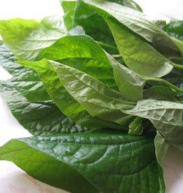 Cha Plu Leaf  100 Gr.