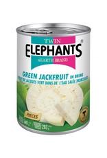 Twin Elephants Groene Jackfruit ingeblikt 540g Twin Elephants