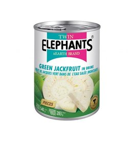Twin Elephants Mít xanh đóng hộp 540g Twin Elephants