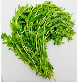 Ka Yang Leaf Cambodia 100g