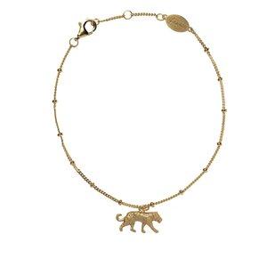 House panther armband