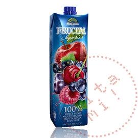 Fructal Fructal Nektar | Rood fruit | 1L