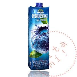 Fructal Fructal Nektar | Bosbessen | 1L