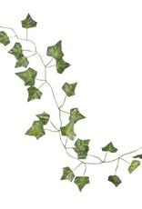 5 slingers botanics