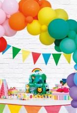 Ballonnenboog: Rainbow