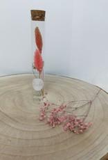 Droogbloem in buisjes: Roos - oranje