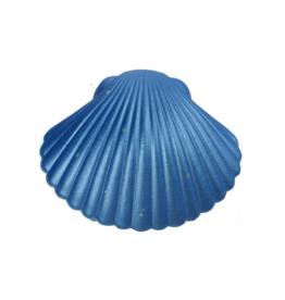 Groeischelp: zeemeermin blauw