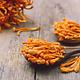 Mushrooms4Life [Cordyceps militaris] – Cordyceps Organic 60 capsules