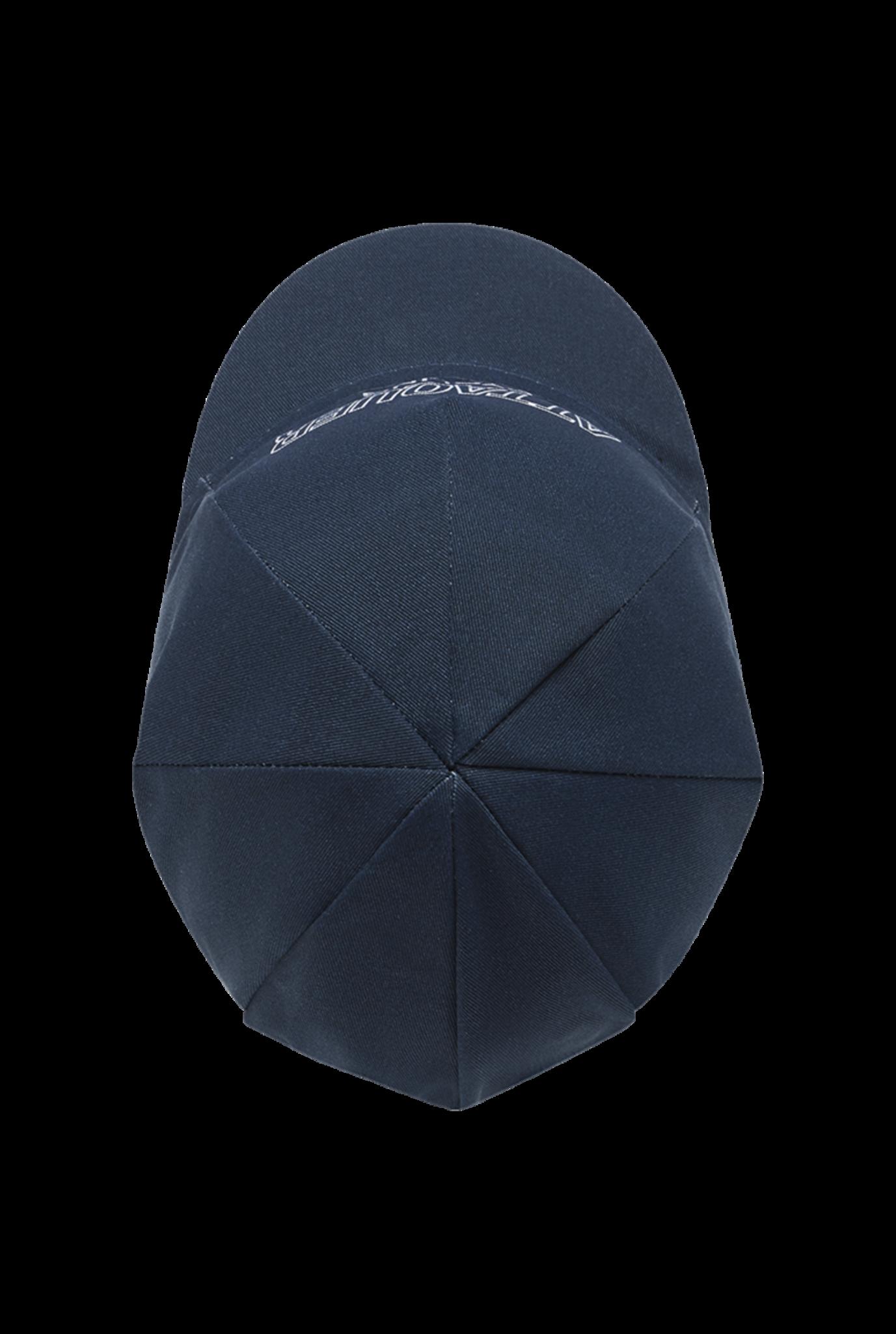 Outliner Logo Koerspet Blauw-3
