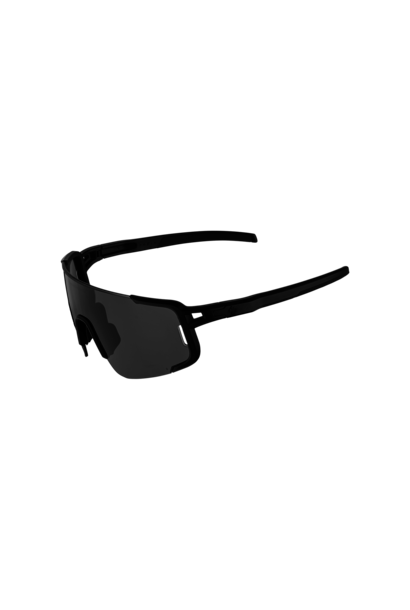 Ronin Polarized