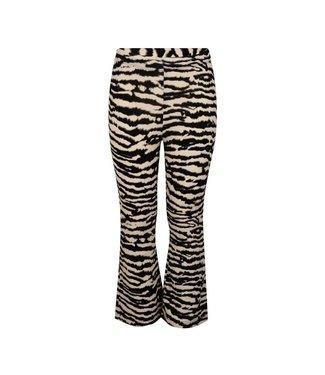 Ambika kids Zebra Flare