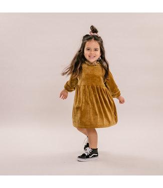 NO LABELS dress velvet gold