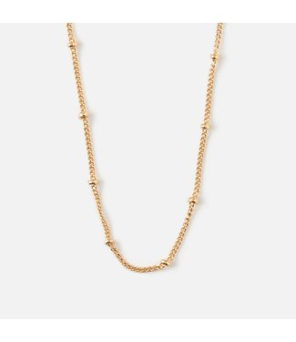 Orelia Satellite Chain Necklace - Short