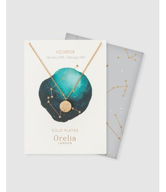 Orelia Constellation Aquarius Gift