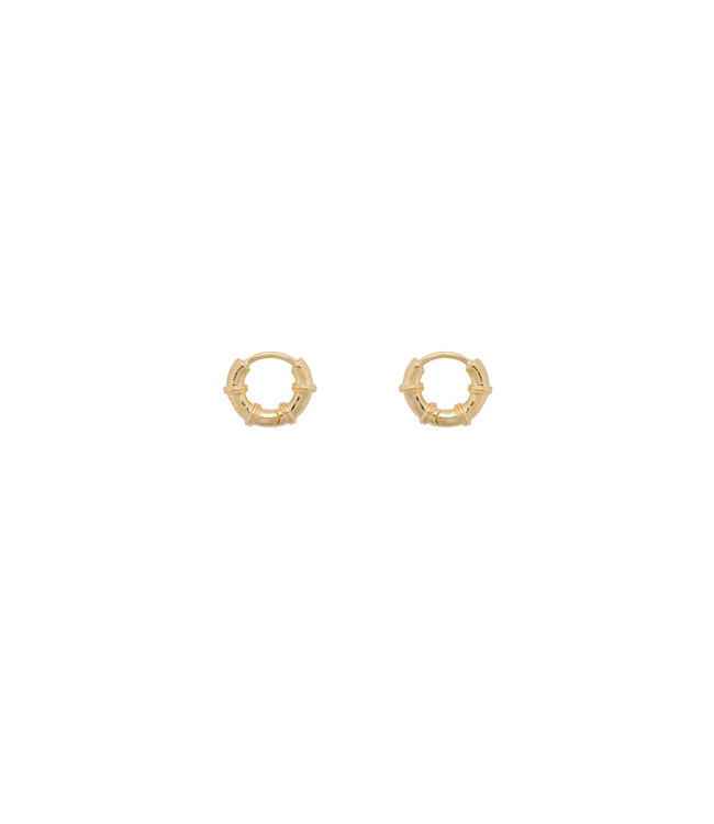 ANNA NINA Cable Ring Earrings