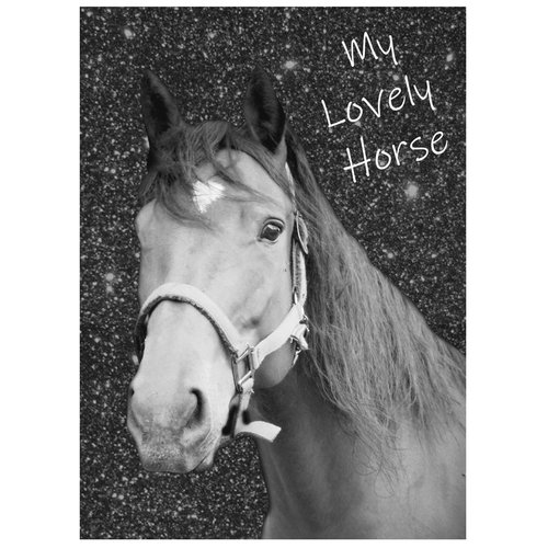 Animal Pictures Animal Pictures Dagboek Lovely Horse - A6