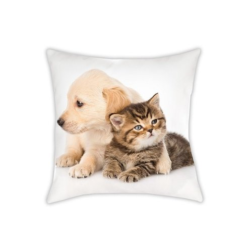 Animal Pictures Animal Pictures Sierkussen, Cat & Dog - 40 x 40 cm - Polyester