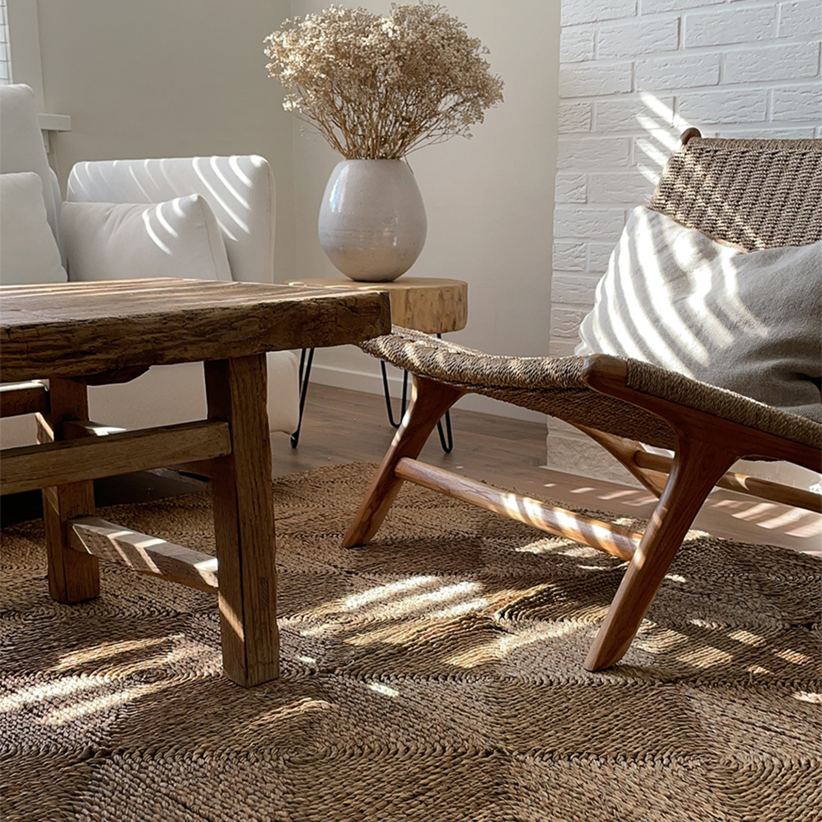 Carpet seagrass