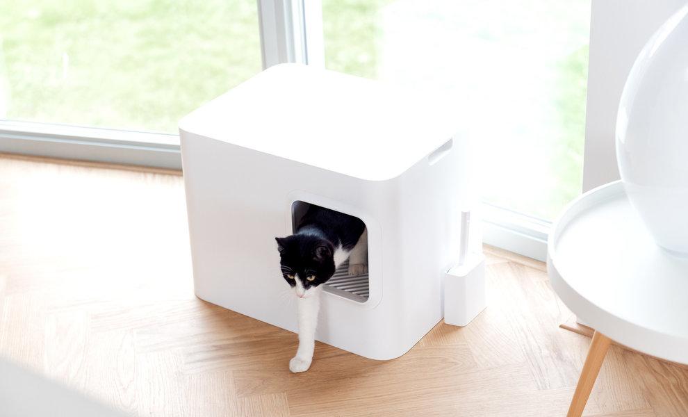 Kunden erzählen, was sie von dem Dome Katzenklo finden