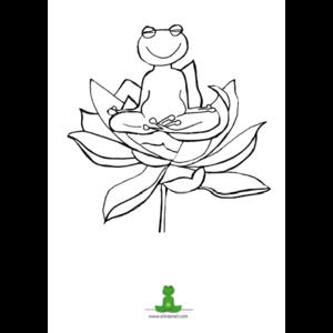 Eline Snel Frog drawings