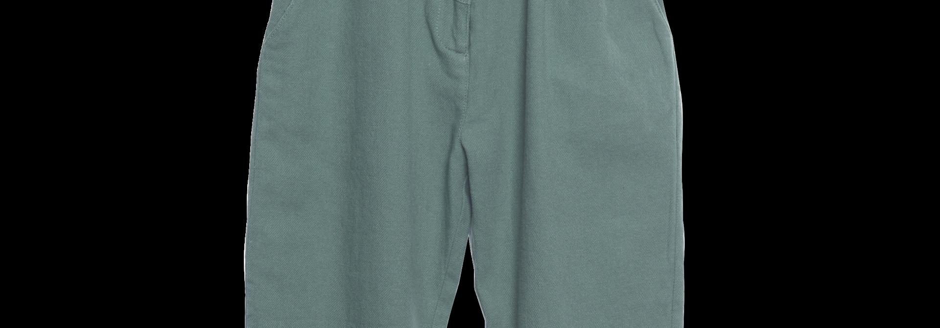 Baggy pants Fern