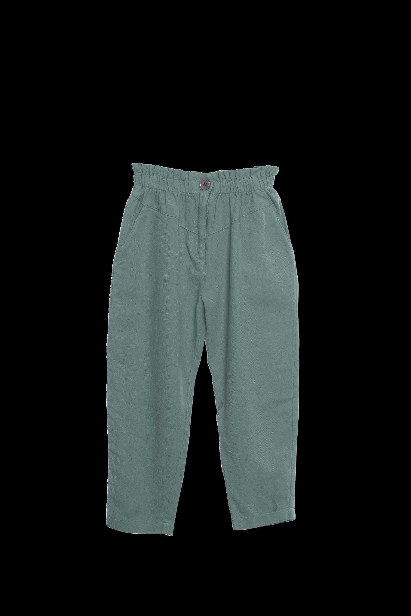 Baggy pants Fern-1