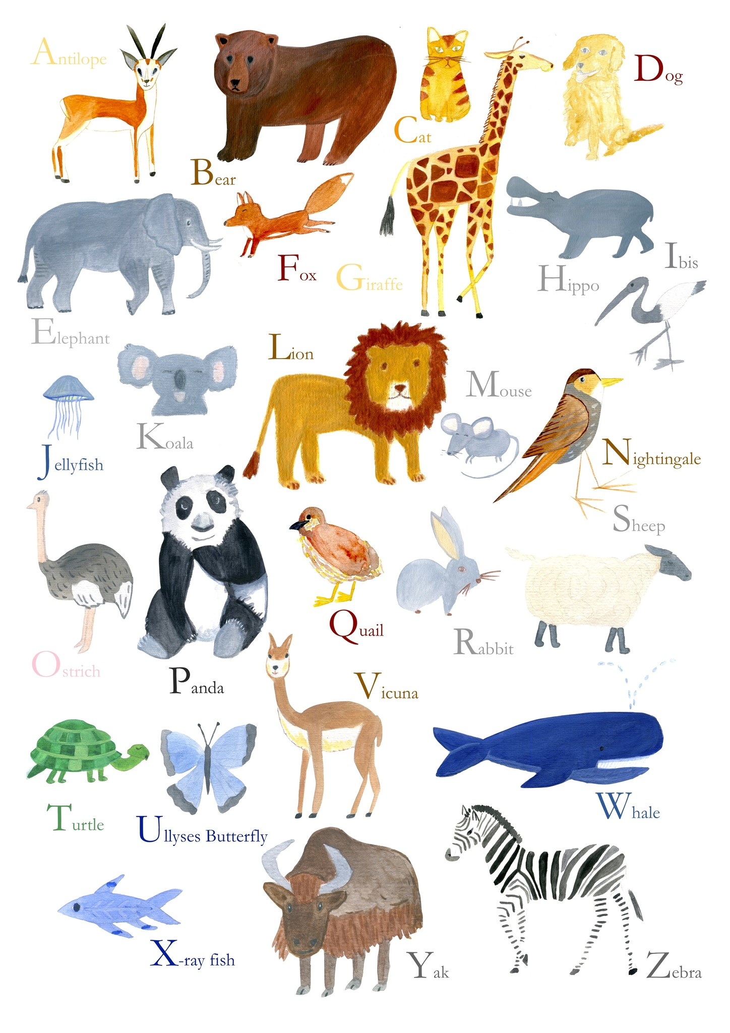 Poster ABC animals-2