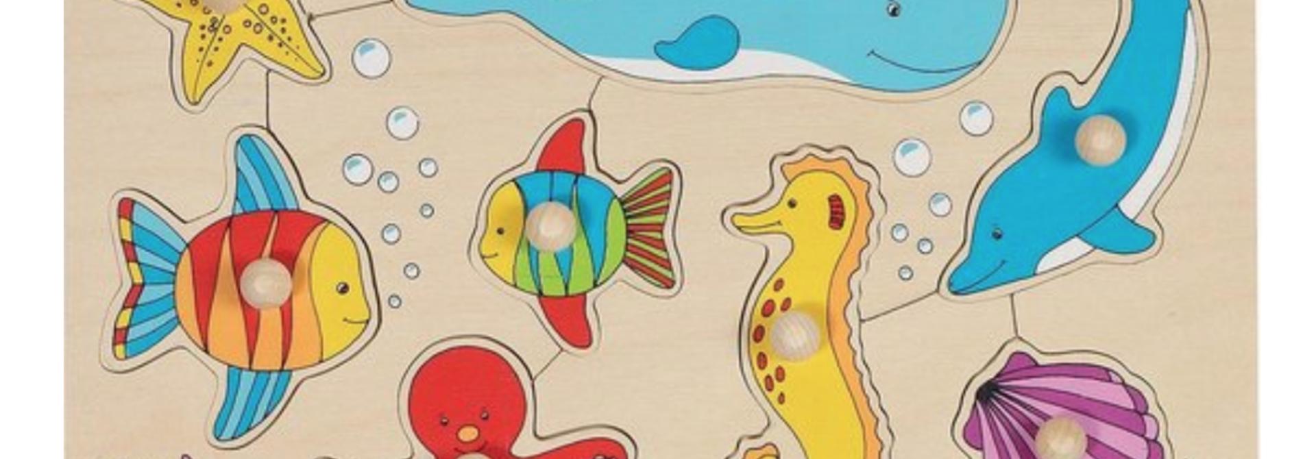 Steekpuzzel vissen