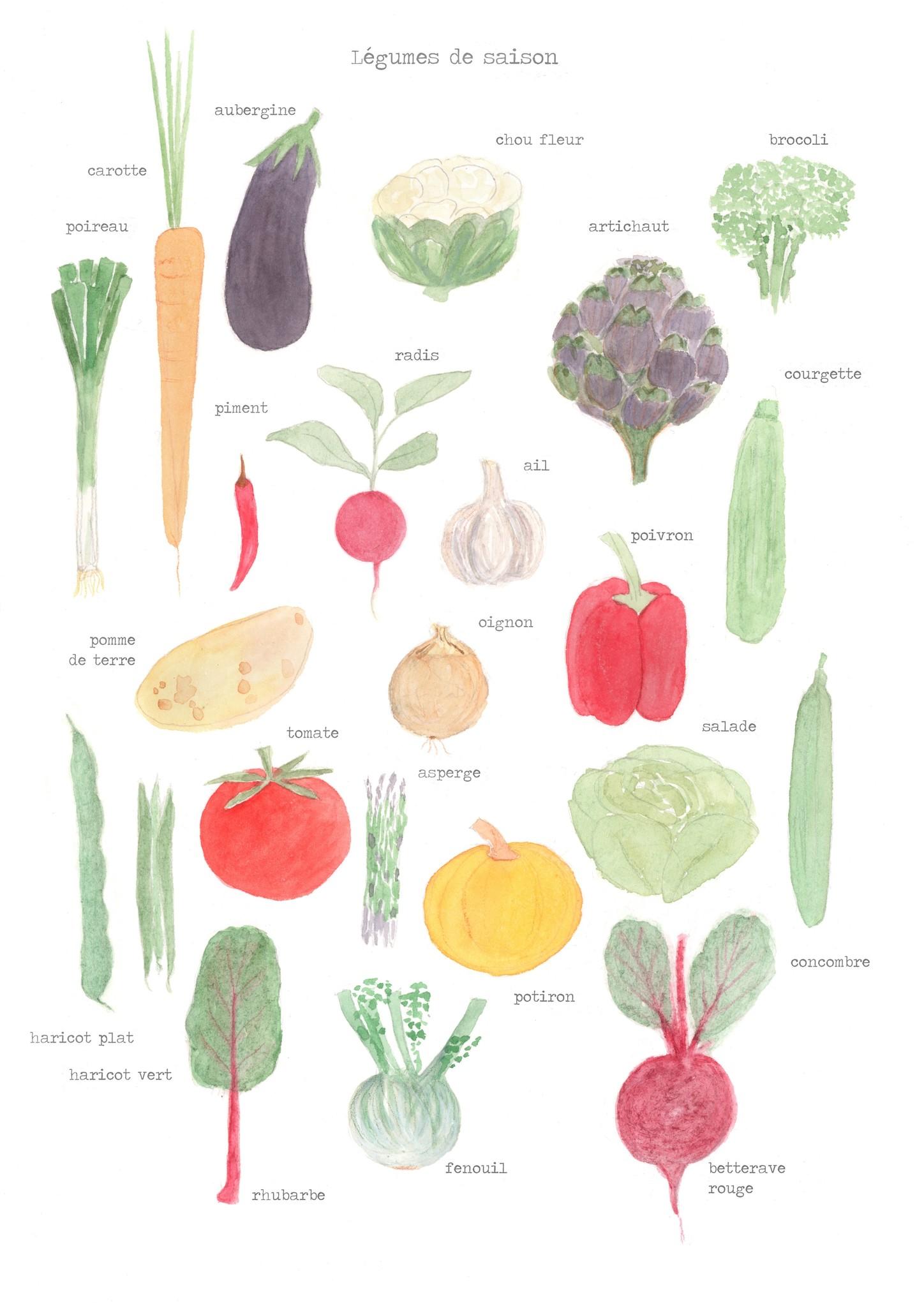 Légumes de Saison  - giclée-1