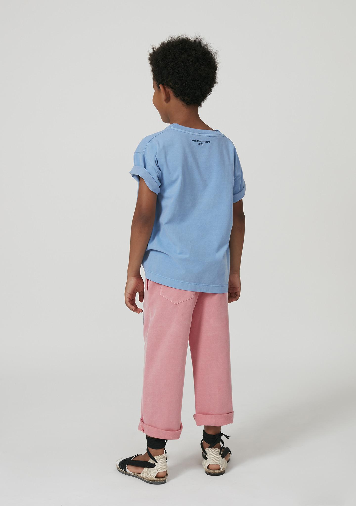Flamingo t-shirt-3