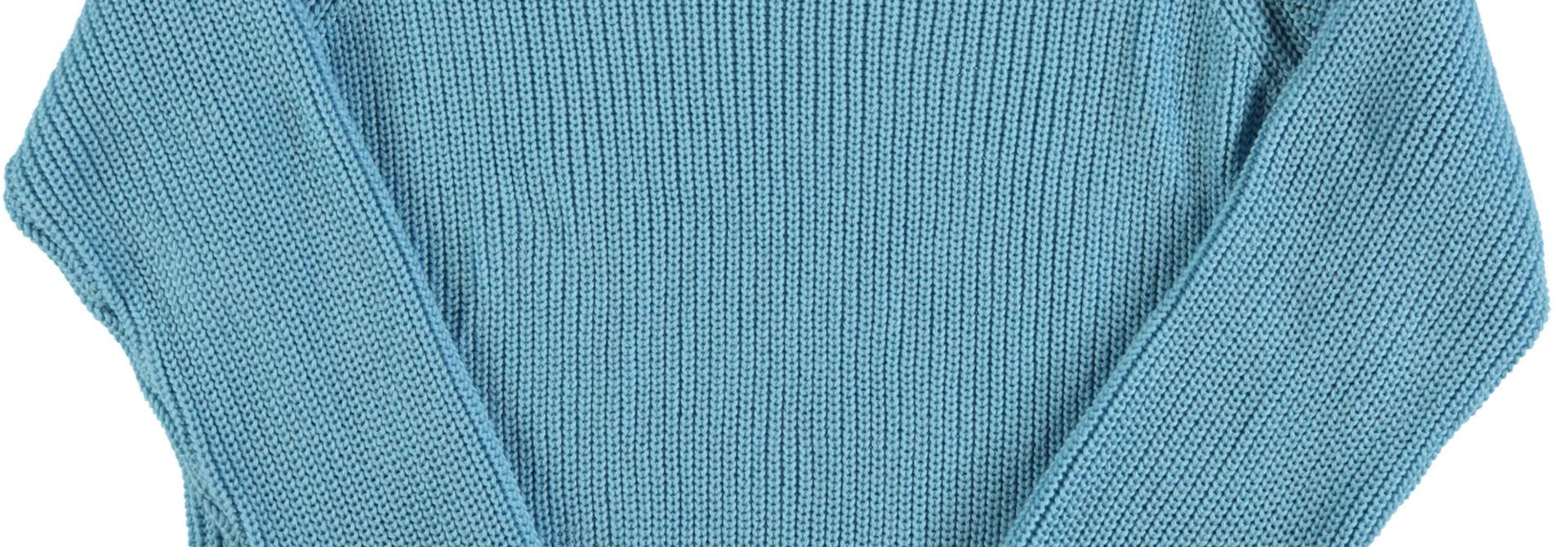 "knitted sweater | blue w/ garnet ""Leone d'or"" print"