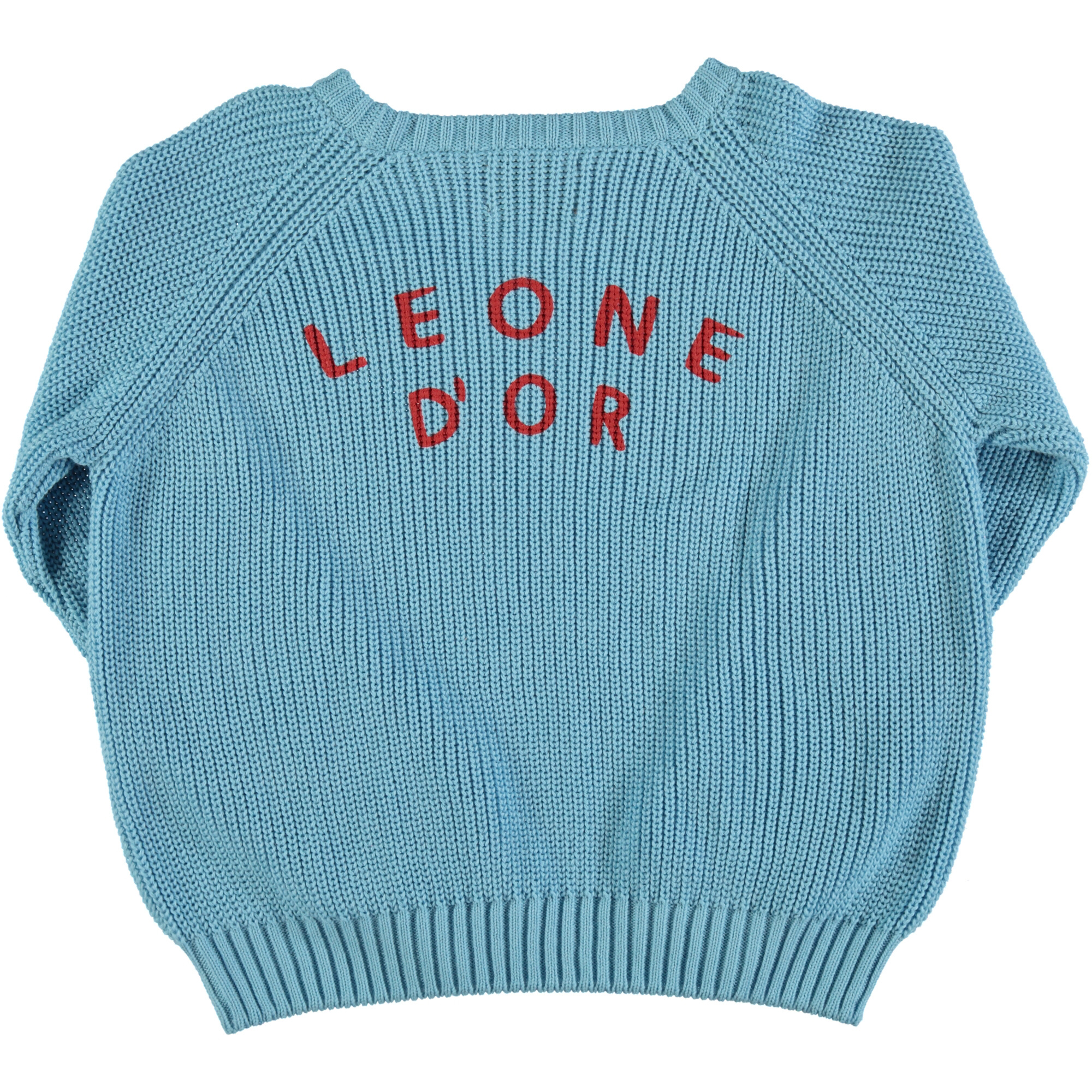 "knitted sweater | blue w/ garnet ""Leone d'or"" print-2"