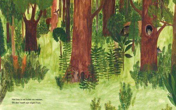 In het Bos-3