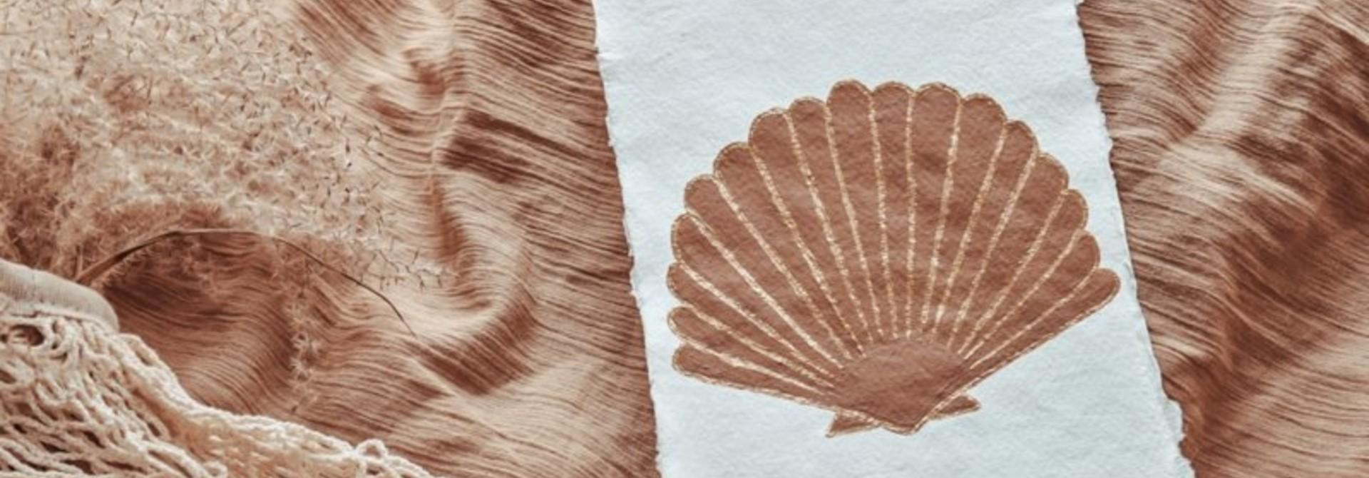 Art Seashell