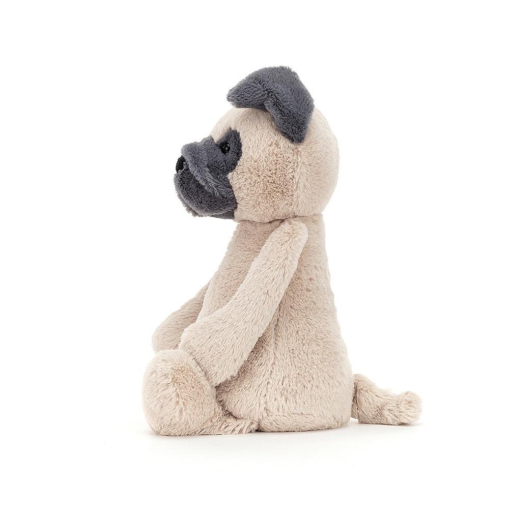Bashful Pug-2